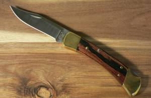 Buck 110 Folding Hunting Knife